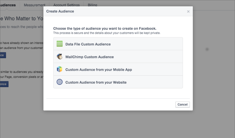 Create a Custom Audience modal screenshot